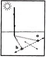 Определение сторон света по тени 1 вариант