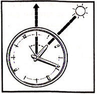 Определение сторон света по часам в Северном полушарии